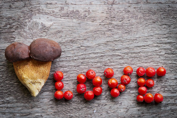 Two pine bolete (Boletus pinophilus) mushrooms grown together, with love inscription made of red rowan berry fruits, on wooden background. Still life photo.
