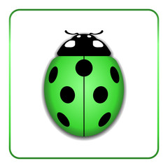 Ladybug small icon. Green lady bug sign, isolated on white background. 3d volume design. Cute colorful ladybird. Insect cartoon beetle. Symbol of nature, spring or summer. Vector illustration