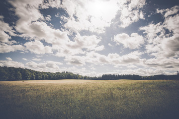 Cloudy weather over a meadow