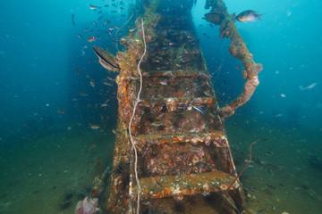 Marine shipwreck