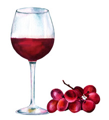 Vibrant watercolor drawing of glass of red wine with grapes