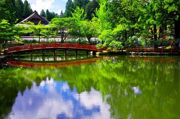高野山檀上伽藍の蓮池