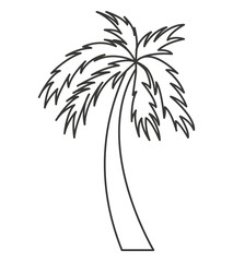 tree palm isolated icon
