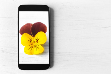 Picture of flower on smart phone