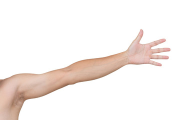 Man shoulder and arm isolated on white background, clipping path Wall mural