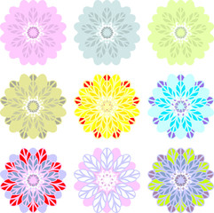 Flowers similar to dahlia, passionflower, flower of the passion, flower of lotus, sunflower, daisy, chrysanthemum 1