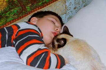 young boy with cat resting on bed
