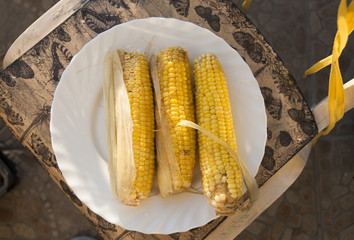 Boiled corn on plate