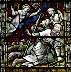 Fototapete - An angel appears to the shepherds