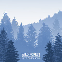 Wild forest. Pine and spruce on the hills. The horizon line in the fog. Silhouettes of trees. Environmental colorful banner. Tourism and travel.