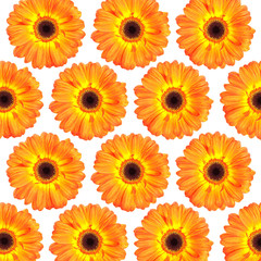 flower head background