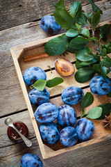 Fresh plums in wooden box and jar of fruit jam. Top view.
