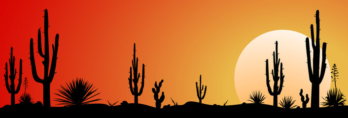 Mexico desert sunset.