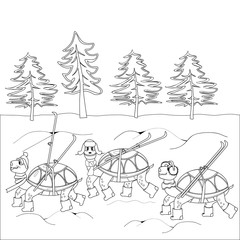 Contour black and white drawing turtles with skis in winter