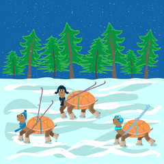 turtles with hats, boots, skis are on the snow forest