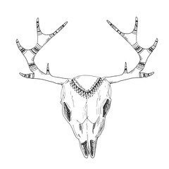Hand-drawn deer skull with native ornament