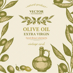 Olive oil vector template