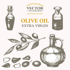 Olive oil hand drawn set vector olive sketch collection