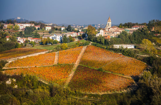 Beautiful view of vineyards in the village in golden autumn, Piemonte, Italy