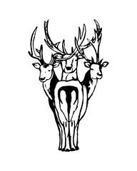 Three-headed deer