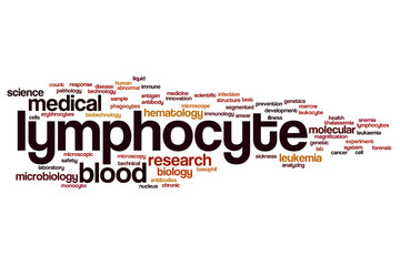 Lymphocyte word cloud