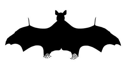 Silhouette einer Fledermaus