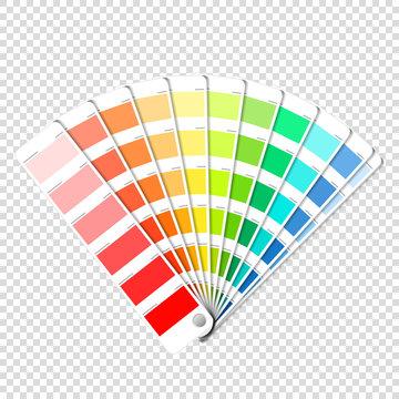 Color palette guide on transparent background