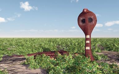 Kobra Schlange