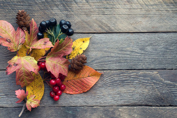 Autumnal plant and berries on wooden background. Top view
