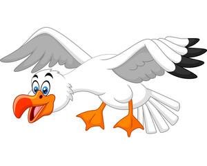 Funny seagull cartoon