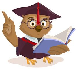 Owl teacher reading book