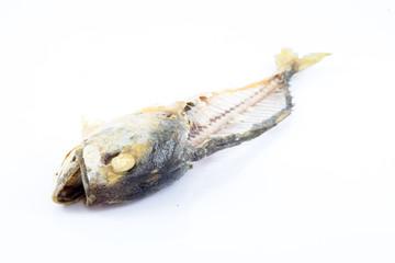 mackerel bones
