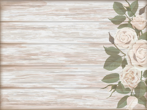 Vintage wooden background with white roses bud. Vector template for greeting card.