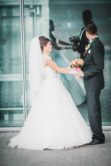 Romantic gentle gorgeous bride and groom on the background of modern futuristic architecture