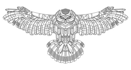 Owl coloring book for adults vector