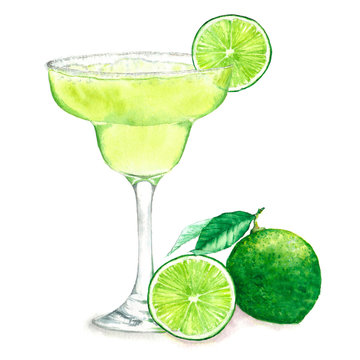 Hand drawn watercolor illustration of fresh Margarita cocktail with green limes isolated on the white background
