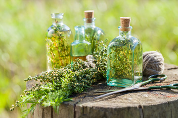 Bottles of thyme, estragon and rosemary essential oil or infusio