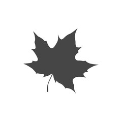 Vector Maple Leaf Icon