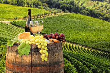 Wall Mural - White wine with barrel on famous vineyard in Chianti, Tuscany, Italy
