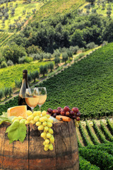Fototapete - White wine with barrel on famous vineyard in Chianti, Tuscany, Italy
