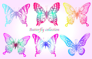 Butterfly colorful set.  Insect sketch collection for design and scrapbooking, vector hand drawn illustration, silhouette, isolated