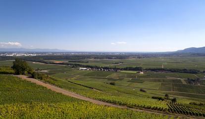 VILLE DE COLMAR dans la plaine d'Alsace_FRANCE