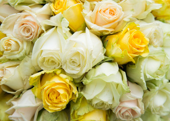 natural roses bouquet background