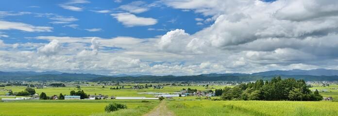 大空と田園と一本道のある風景