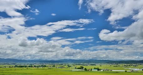大空と初秋の田園風景