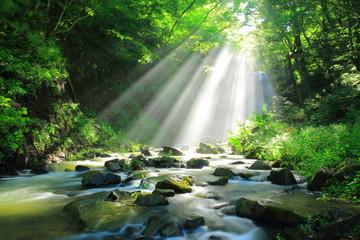 秋田県 亀田不動滝の光芒