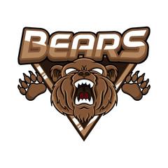 bears banner illustration design colorful