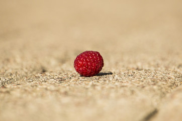 Raspberries in a middle of a street (Close up)
