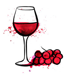 Vector and watercolor drawing of red wine with grapes