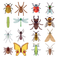 Insect vector flat icons isolated on white background